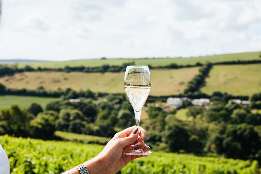 CORNISH WINE TOUR